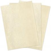 Couverture reliure grain cuir ivoire 230gsm A4 216x303mm paquet de 100